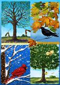 Seasons of a Tree