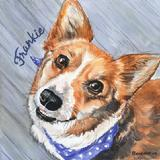 Watercolor Portrait of Welsh Corgi Dog