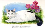 Watercolor Memorial Portrait of Cat